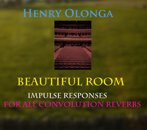 Henry-Olonga-Beautiful-room